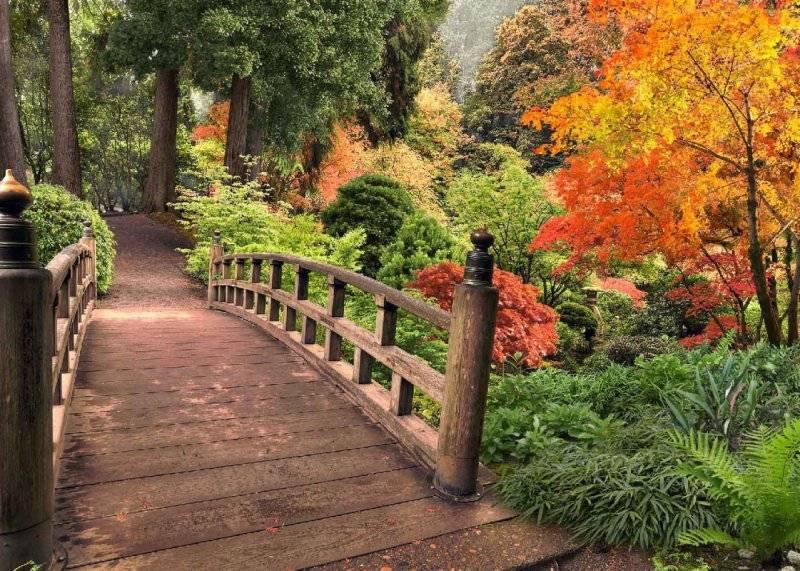 Купить фотообои для стен: Мостик в осень