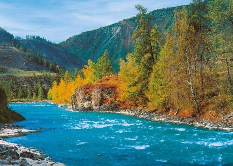 Купить фотообои для стен: Горная речка
