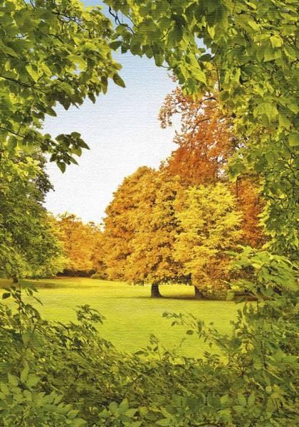 Купить фотообои для стен: Осенний шепот