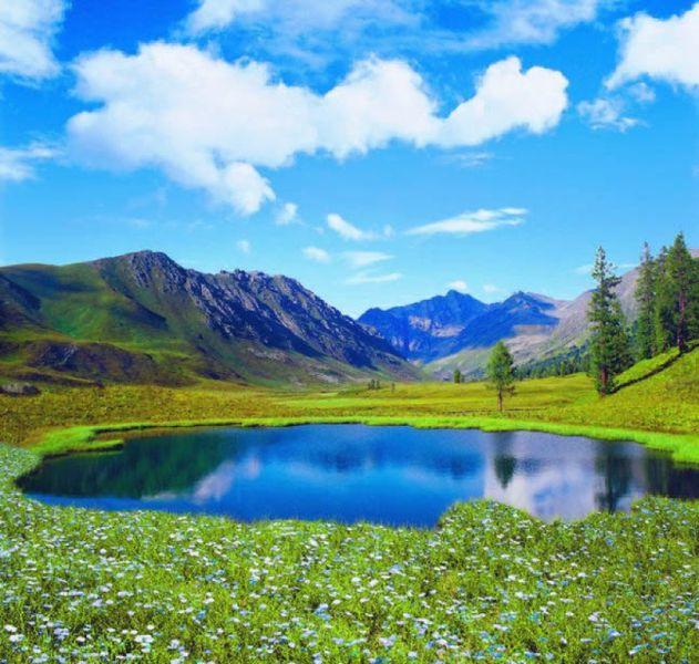 Купить фотообои для стен: Озеро в цветах