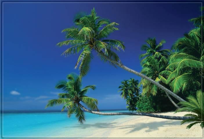 Купить фотообои для стен: Пляж
