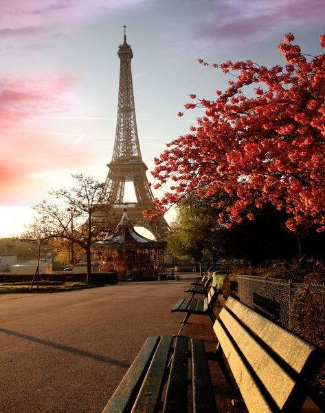 Купить фотообои для стен: Париж