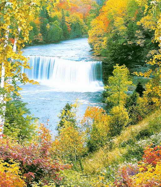 Купить фотообои для стен: Осенняя сказка