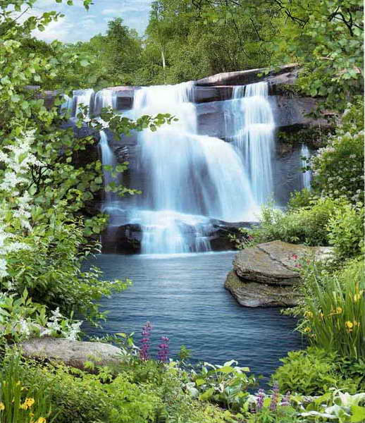 Купить фотообои для стен: Водопад Созерцание