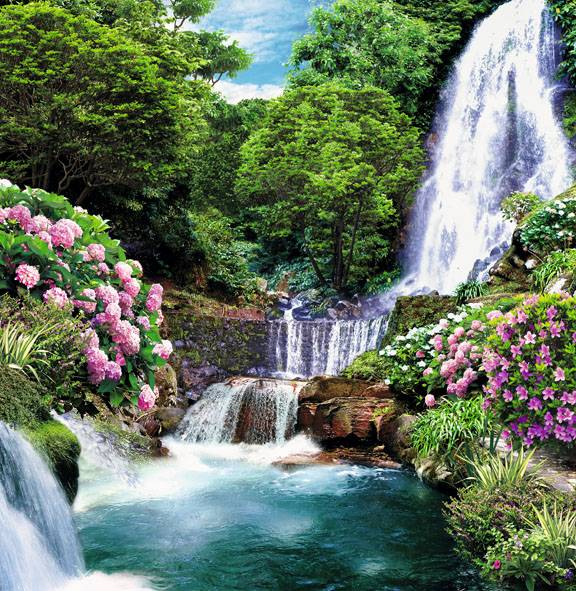 Купить фотообои для стен: Цветущий водопад
