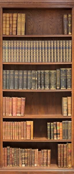 Купить фотообои для стен: Библиотека