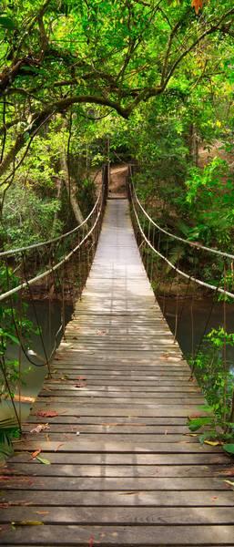 Купить фотообои для стен: Веревочный мостик