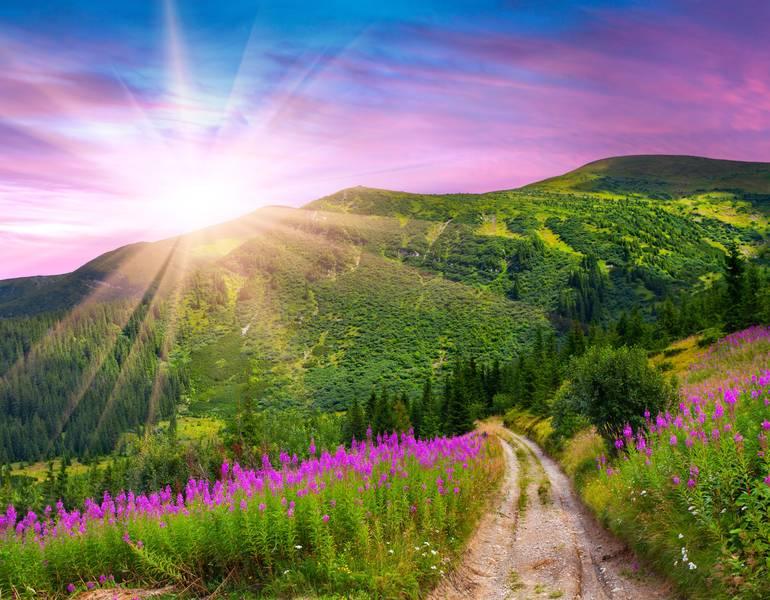Купить фотообои для стен: Утро в горах