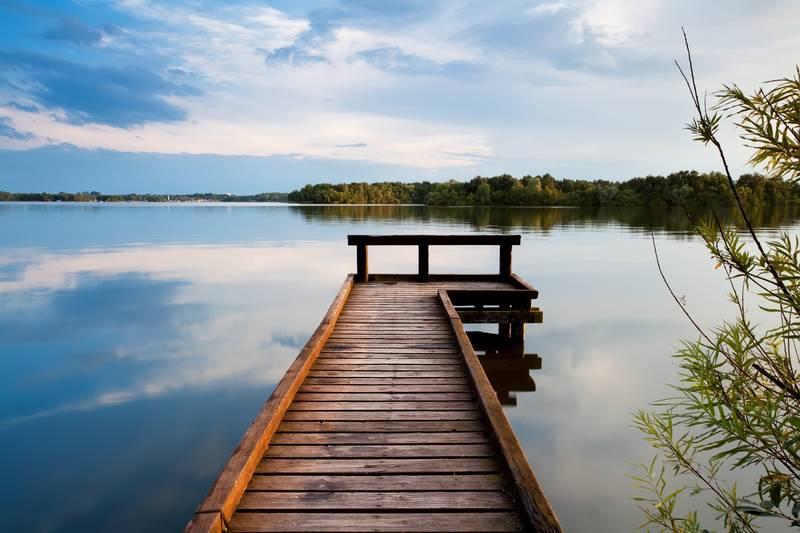 Купить фотообои для стен: На озере