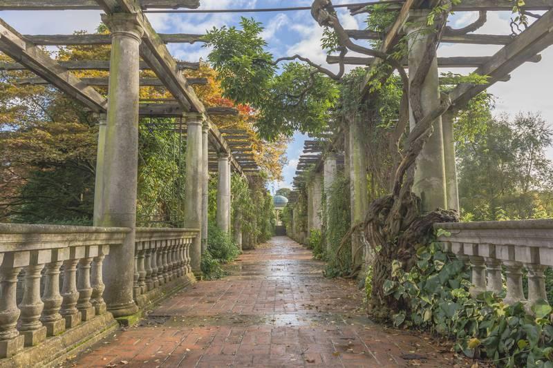 Купить фотообои для стен: Древняя терраса