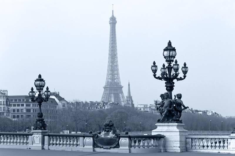 Купить фотообои для стен: Pont Alexandre III в Париже
