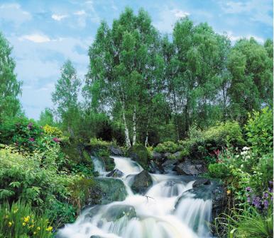 Купить фотообои для стен: Березки у водопада