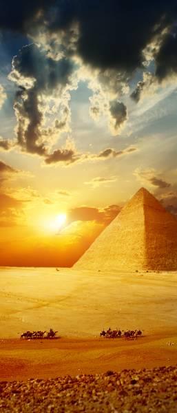 Купить фотообои для стен: Египетские пирамиды