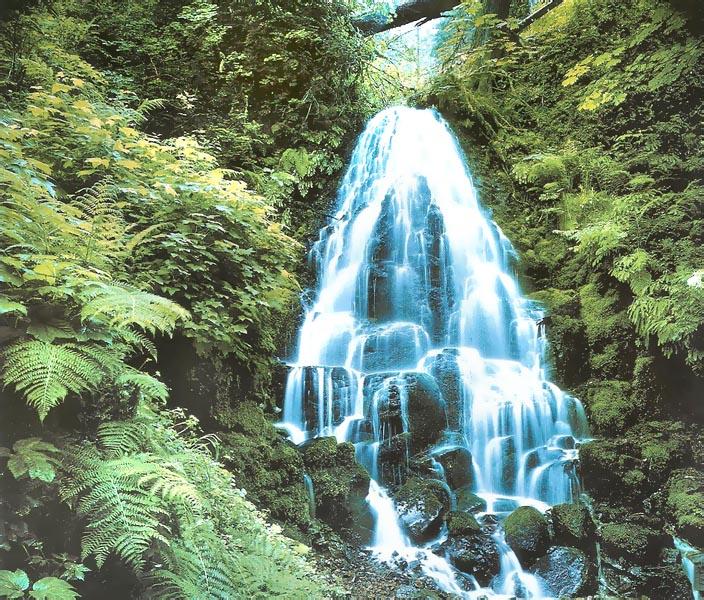 Купить фотообои для стен: Водопад
