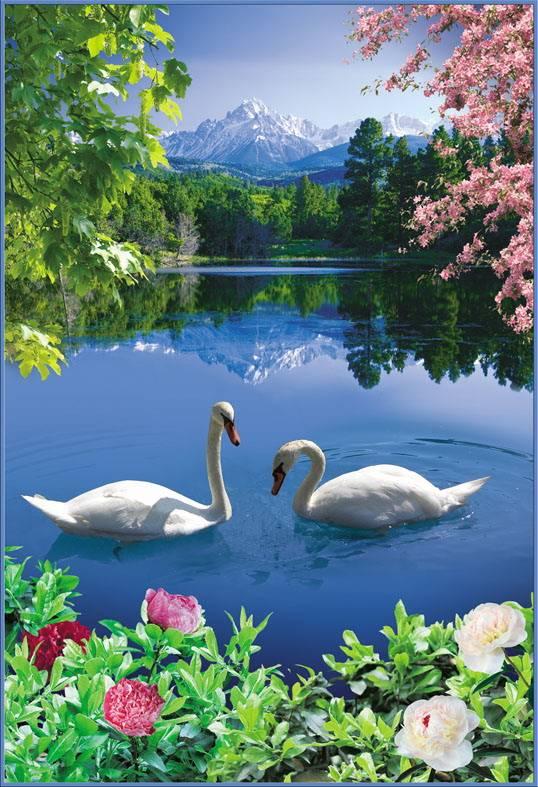 Купить фотообои для стен: Лебединое озеро