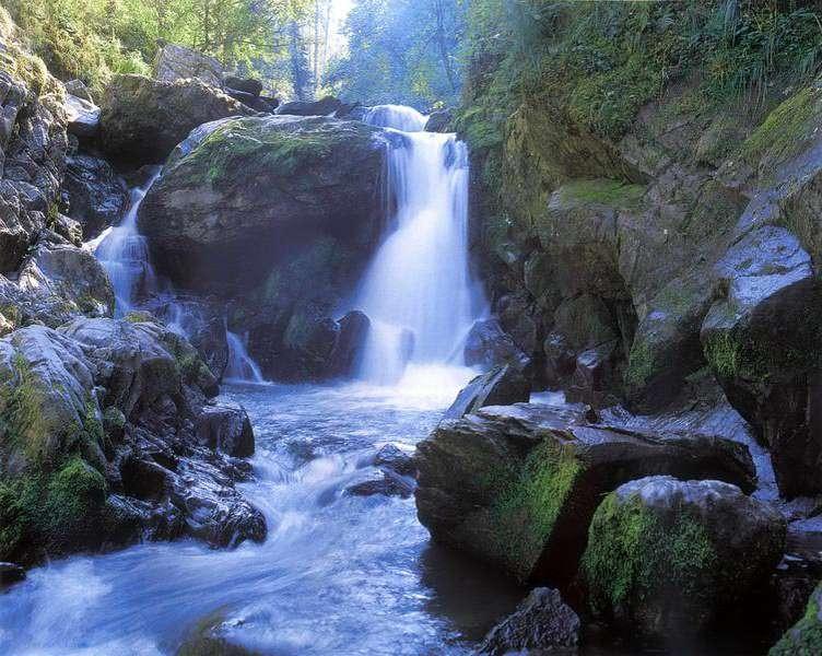 Купить фотообои для стен: Поющие водопады