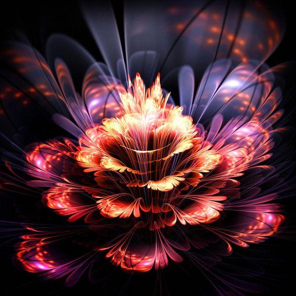 Купить фотообои для стен: Аленький цветочек