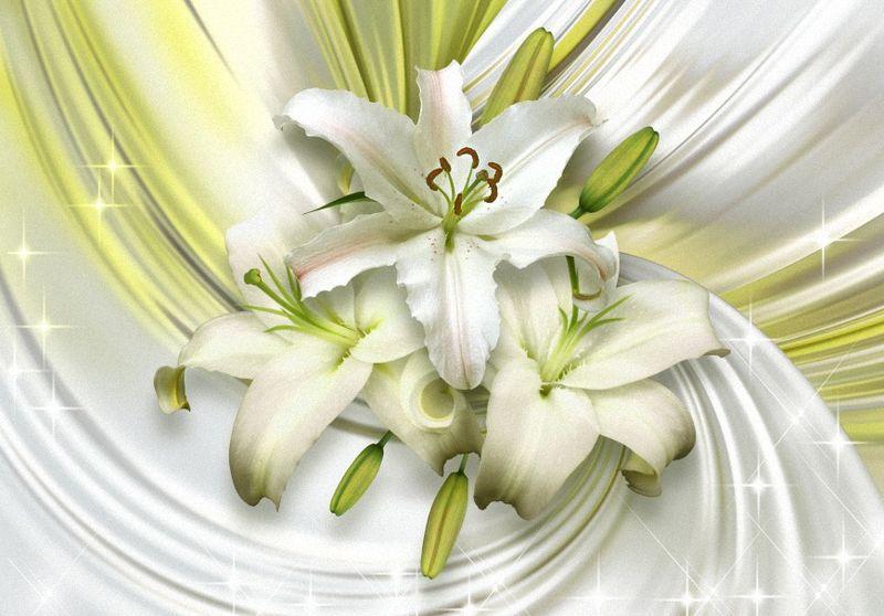 Купить фотообои для стен: Лилии Свежесть