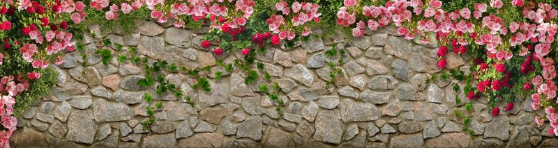 Купить фотообои для стен: Каменная стена, розы