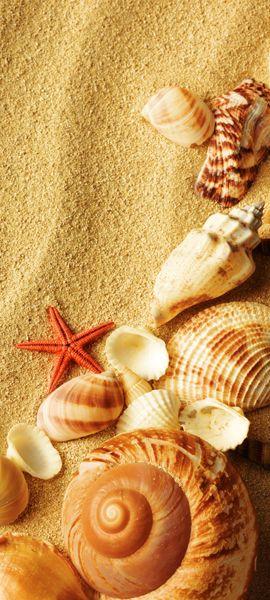 Купить фотообои для стен: На пляже