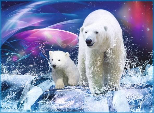 белые медведи фотообои на стену: