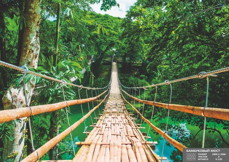 Купить фотообои для стен: Бамбуковый мост
