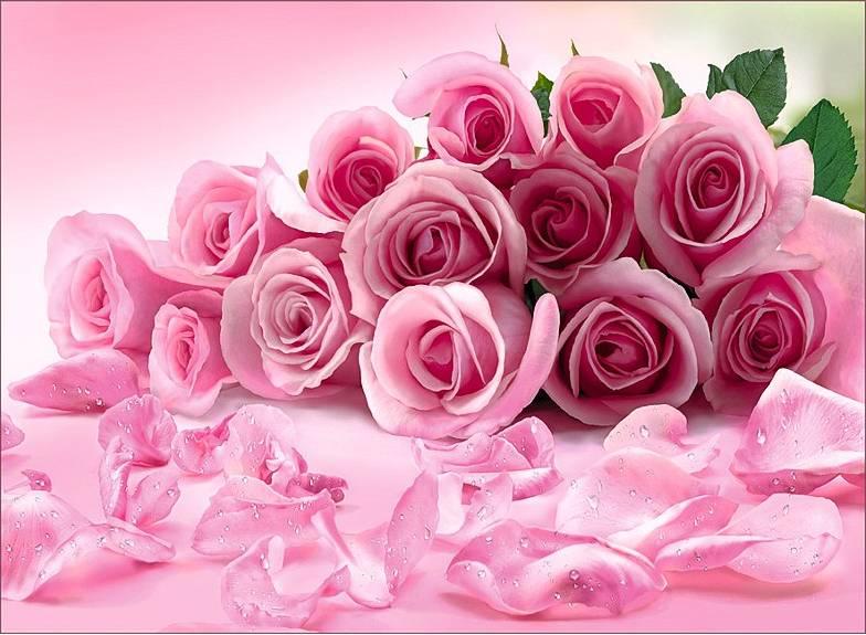 Купить фотообои для стен: Розовые розы +