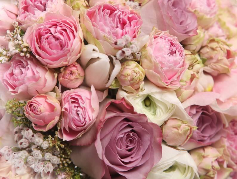 Купить фотообои для стен: Букет из роз