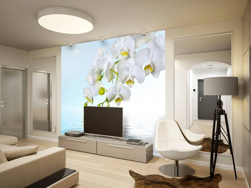 Фотообои в интерьере для кухни: фотообои цветы, орхидеи, белые орхидеи, для кухни, орхидеи над водой