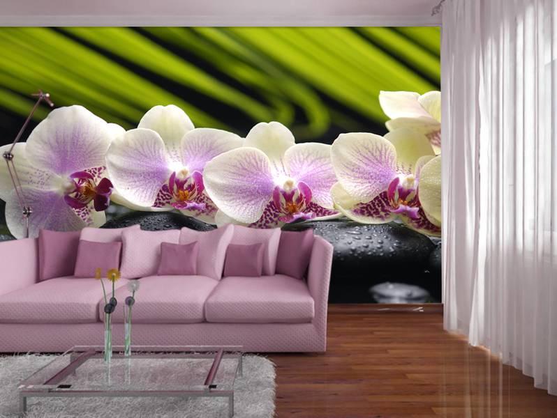 Фотообои в интерьере для спальни: фотообои цветы, орхидеи, орхидеи на камнях, для спальни