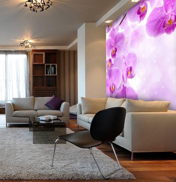 Фотообои в интерьере для кухни: фотообои орхидеи, синеревые орихидеи, цветы, обои в сиреневых тонах, для спальни, для гостиной
