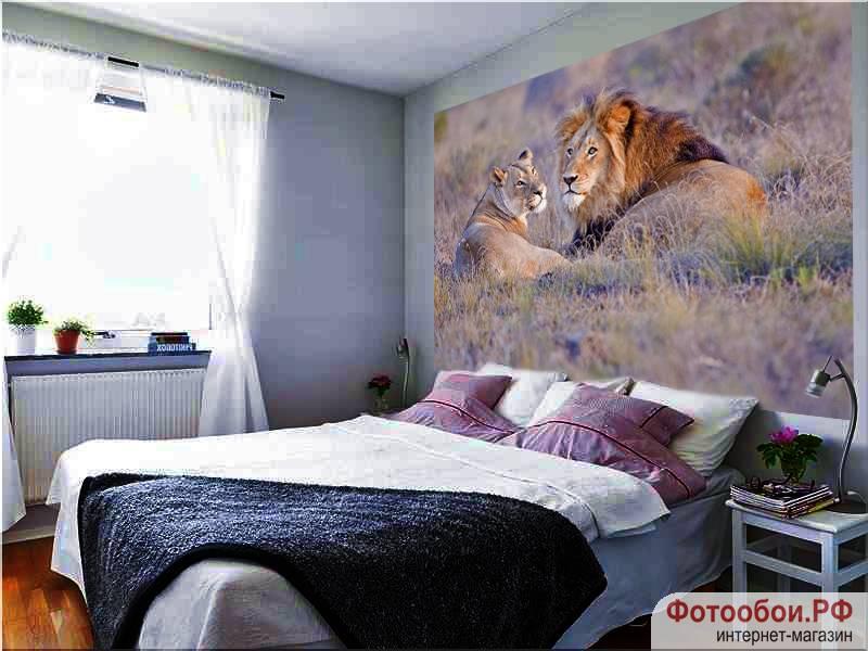 Фотообои в интерьере для спальни: фотообои животные, львы, семейство львов, для спальни