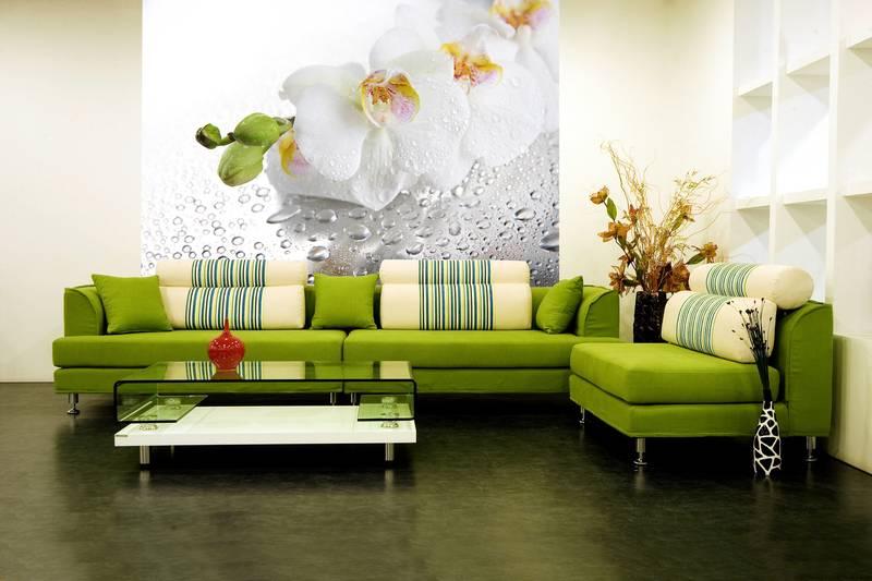 Фотообои в интерьере для кухни: фотообои белые орхидеи, цветы, роса, 3д цветы