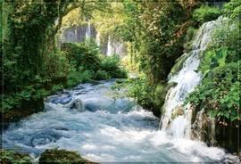 Тропический водопад в джунглях