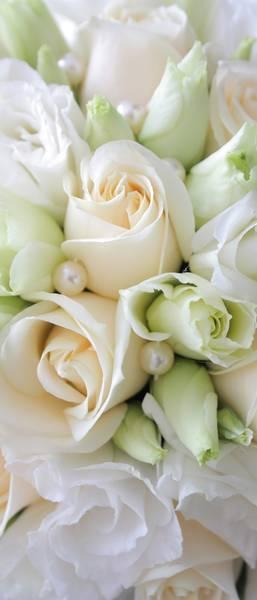 Розы, нежный букет