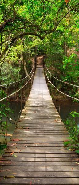 Веревочный мостик
