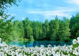 Цветочный берег