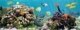 Морской пейзаж 2