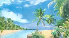 Пляж Мадагаскара