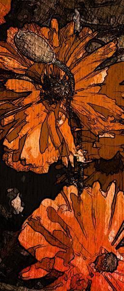 Маки, цветочный гранж