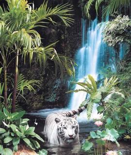 Тропическая сказка