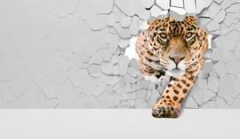 Леопард, 3D-стена