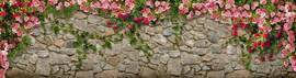 Каменная стена, розы
