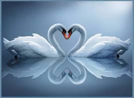 Таинство любви