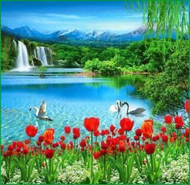 Волшебство природы
