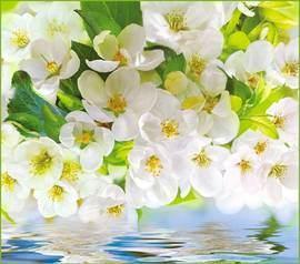 Весна +