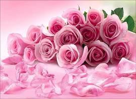 Розовые розы +