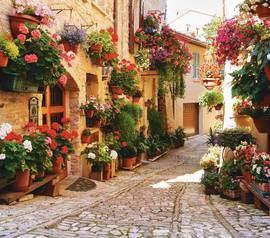 Цветочная улочка