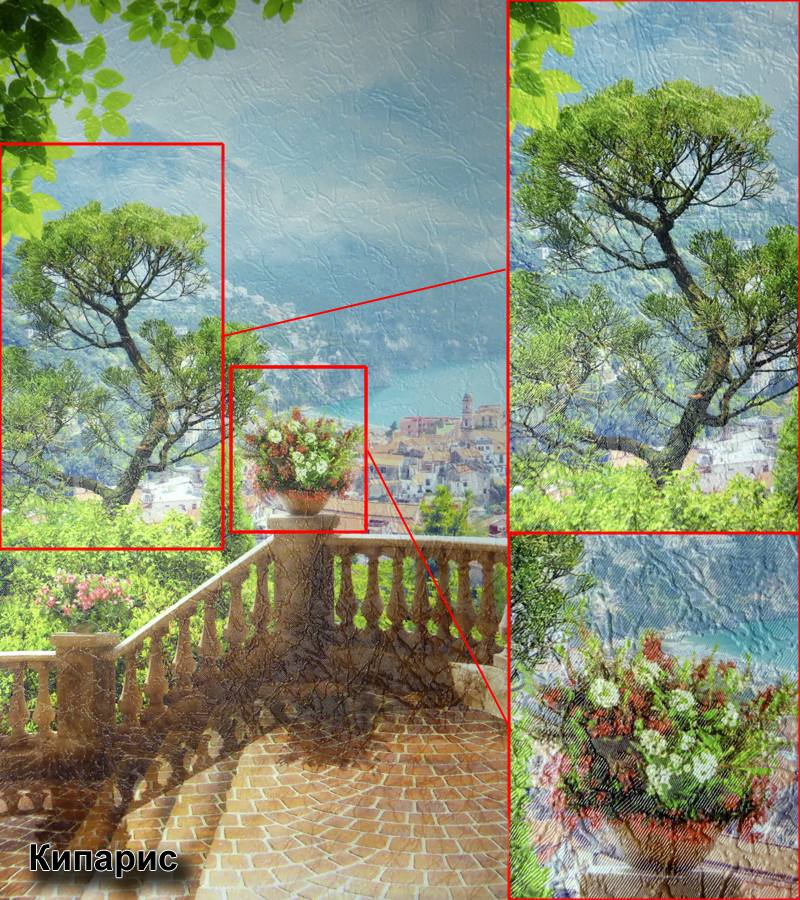 виниловые фотообои на флизелиновой основе, текстура - кипарис
